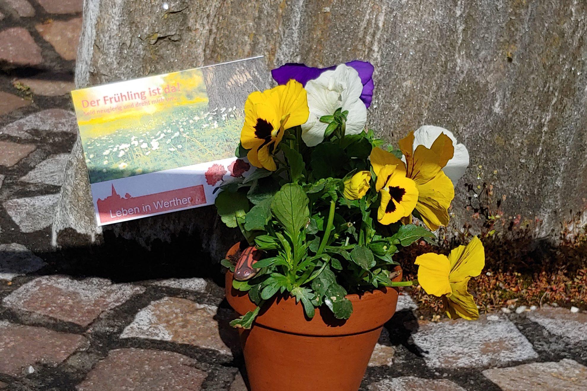 Blumengrüße zum 1. Mai